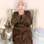 kattenallergie1